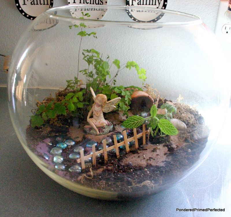 What Is It About These Tiny Little Fairy Gardens That Is So Appealing Fairy Terrarium Fairy Garden Diy Garden Terrarium