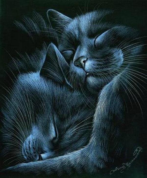 Открытки летием, два кота картинки рисованные