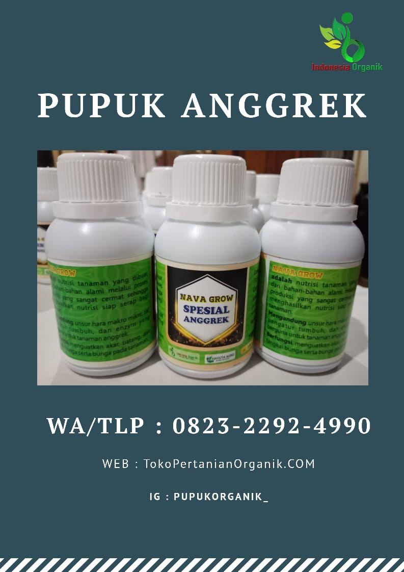 Subur 0823 2292 4990 Jual Pupuk Anggrek Vanda Kirim Lampung