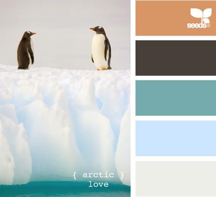 arctic love  http://design-seeds.com/index.php/P120