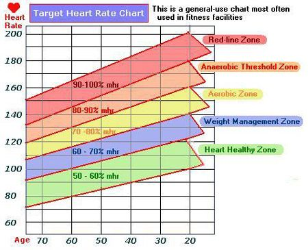 Image Result For Exercise Heart Rate Chart Fitness Tools Tips