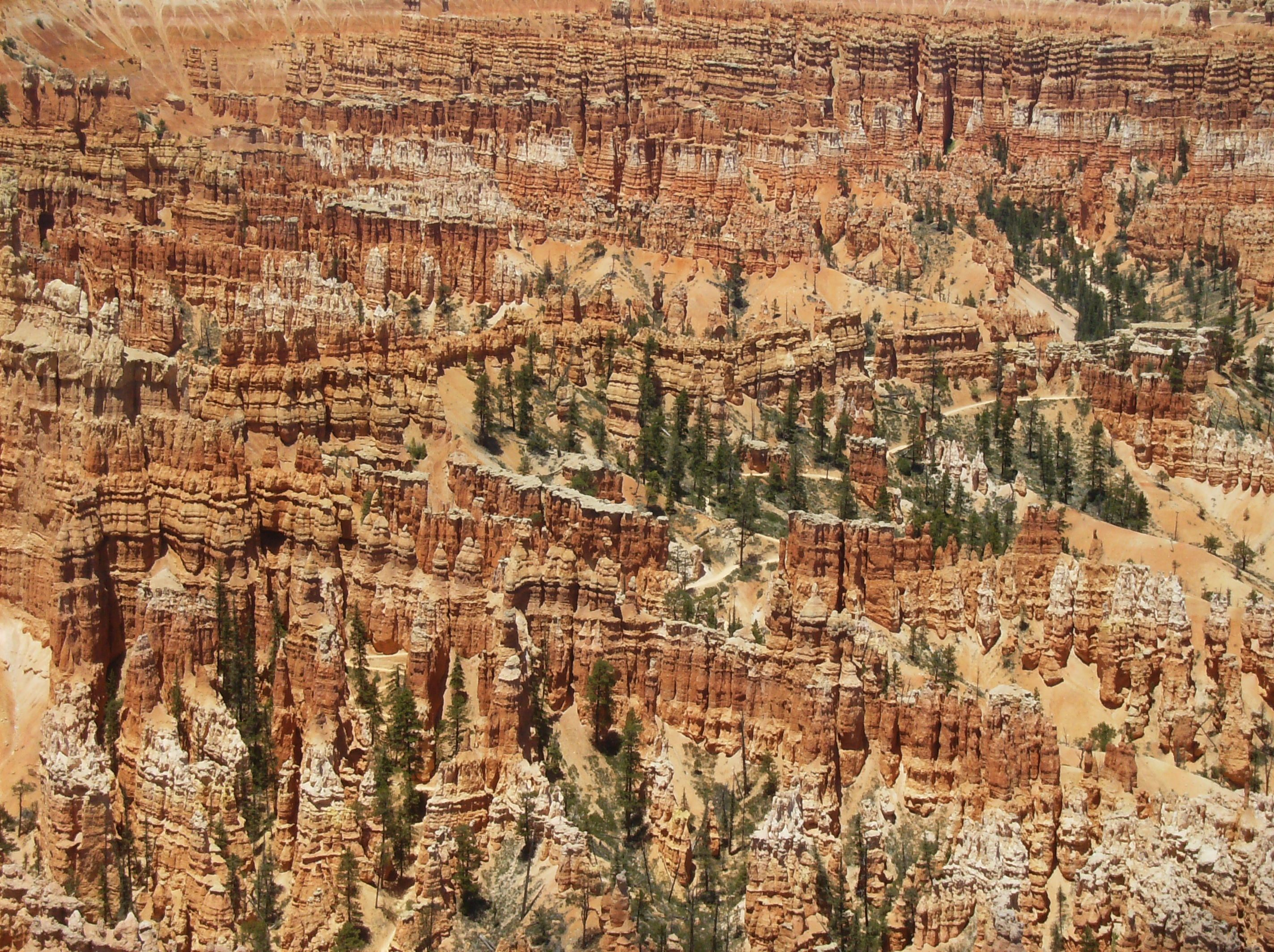 Bryce National Park  Been here