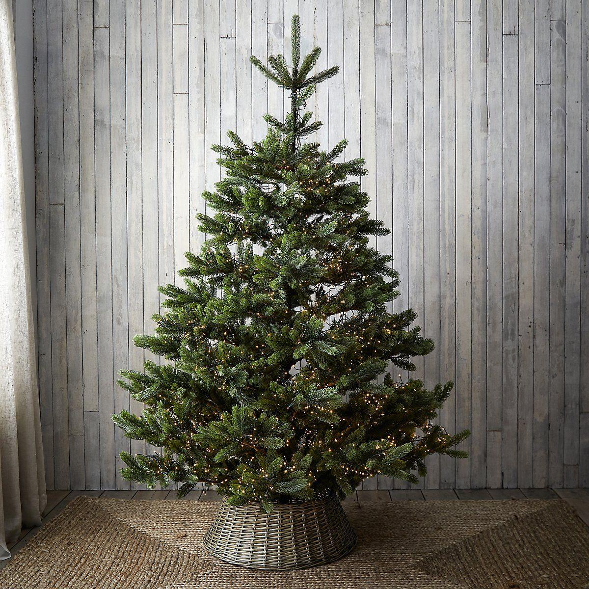 Symons Nordmann Fir Christmas Tree 7 5ft Christmas Trees The