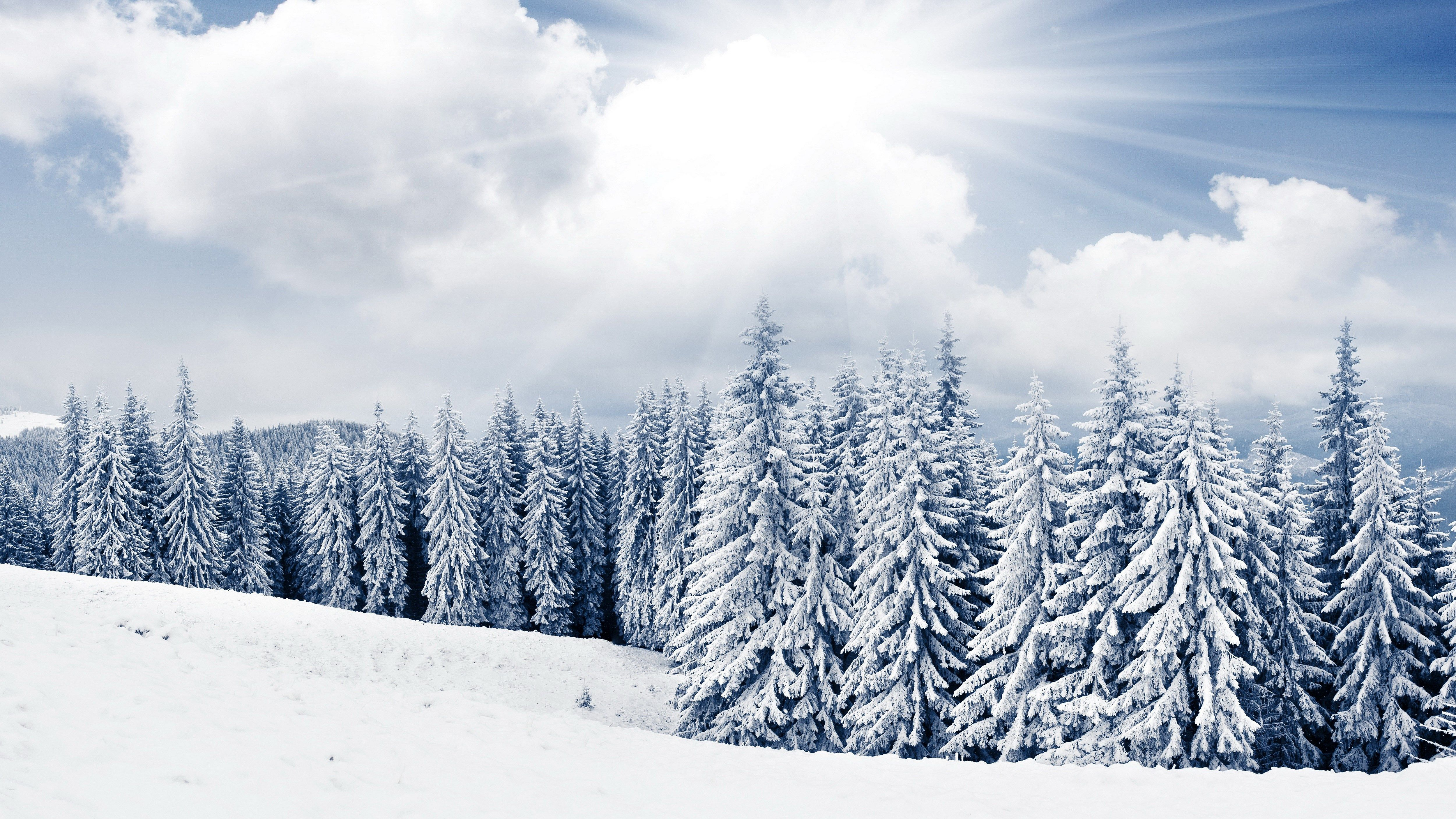 Winter Scenes Desktop Backgrounds Free 5000x2812