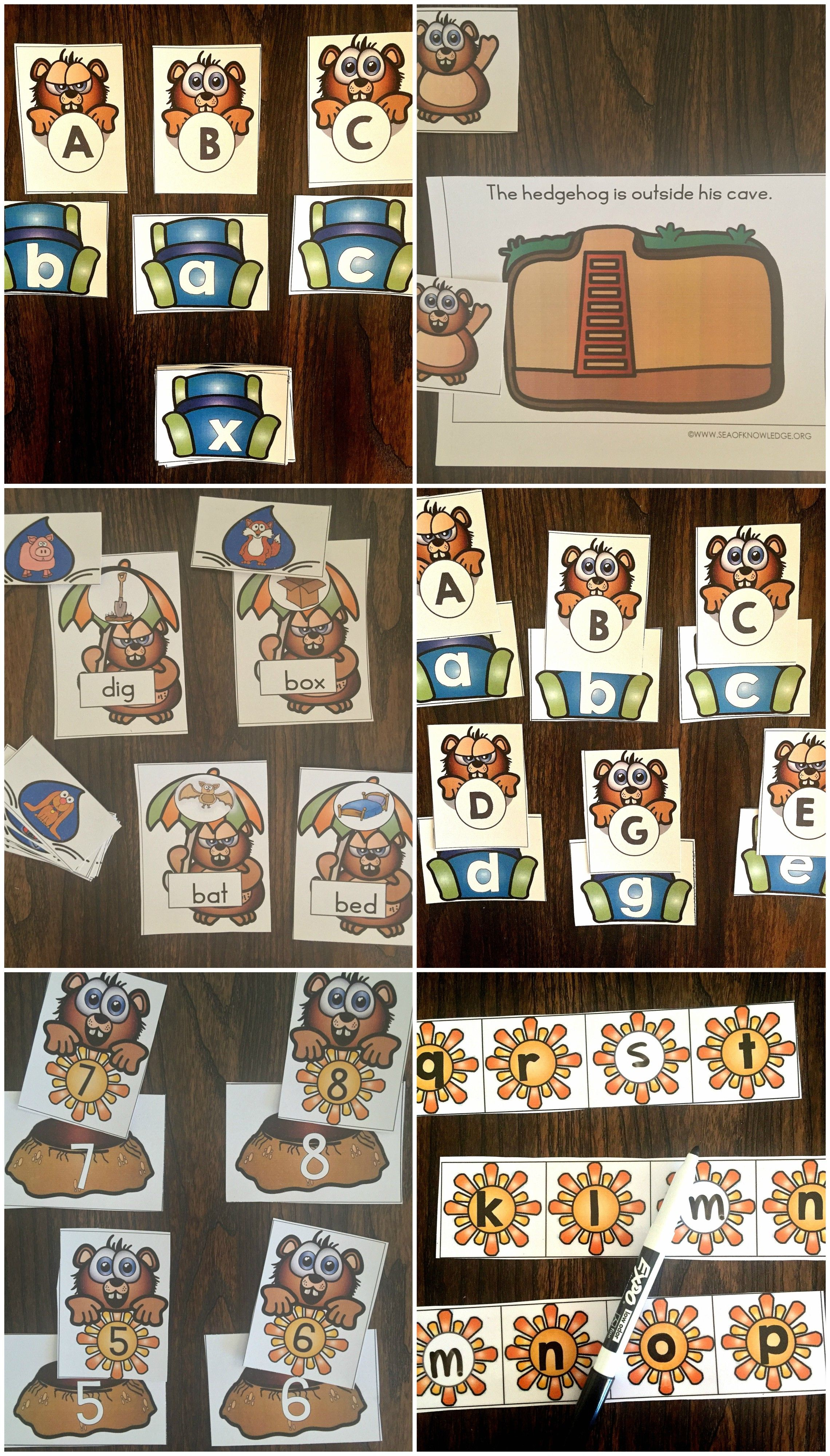 Math And Literacy Groundhog Day Activities Preschool