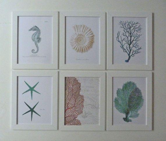 set of 6 vintage coastal framed sea life prints by beachcomberhome