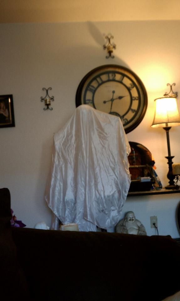 @spirithalloween Hovering Ghost Haunting My Living Room. Heu0027s Taken A  Liking To My Pet Part 44