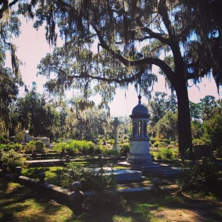 Photo of Bonaventure Cemetery