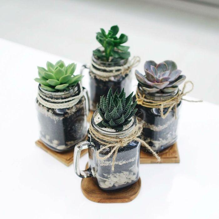 Idee Diy Cadeau Noel Terrarium Bocaux Decoration Plante