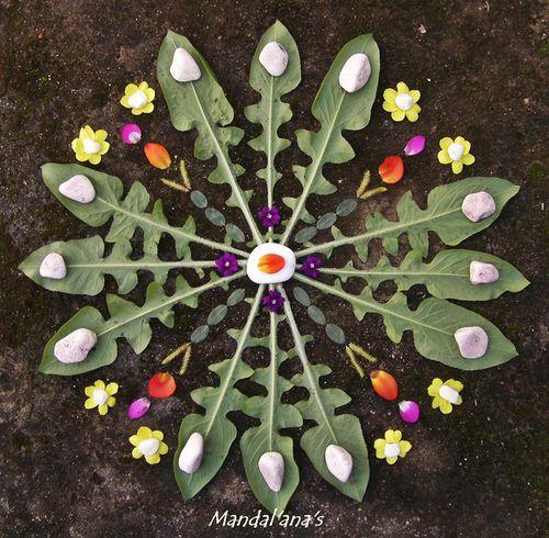 Nature mandala - flowers, rocks, dandelion like leaves Mandala Nature, Flower Mandala, Flower Art, Mandalas Painting, Mandalas Drawing, Art Et Nature, Nature Crafts, Land Art, Wallpaper Rosa