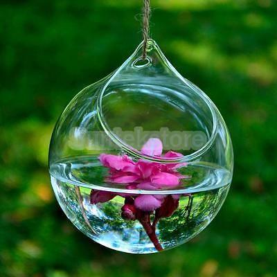 Hanging Glass Hydroponic Flowers Planter Vase Terrarium Container Home Decor