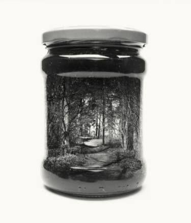 "Saatchi Art Artist Christoffer Relander; Photography, ""Jarred path - Limited Edition 2 of 6"" #art"