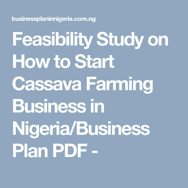 Feasibility Study on How to Start Cassava Farming Business in