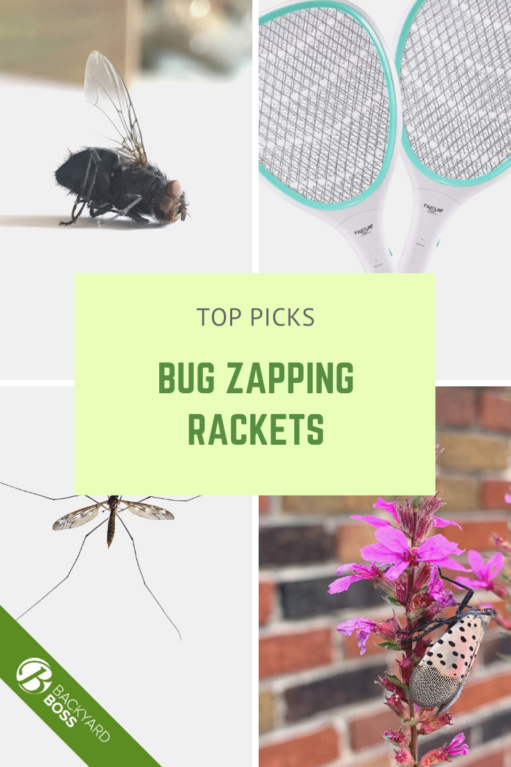 The Best Electric Flyswatters Available Now Reviews Tips In 2020 Get Rid Of Flies Household Pests Fly Swatters