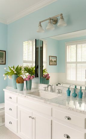 Blue Bathroom: like colour, handles and powder room feel. Can we fix up storage under sink?