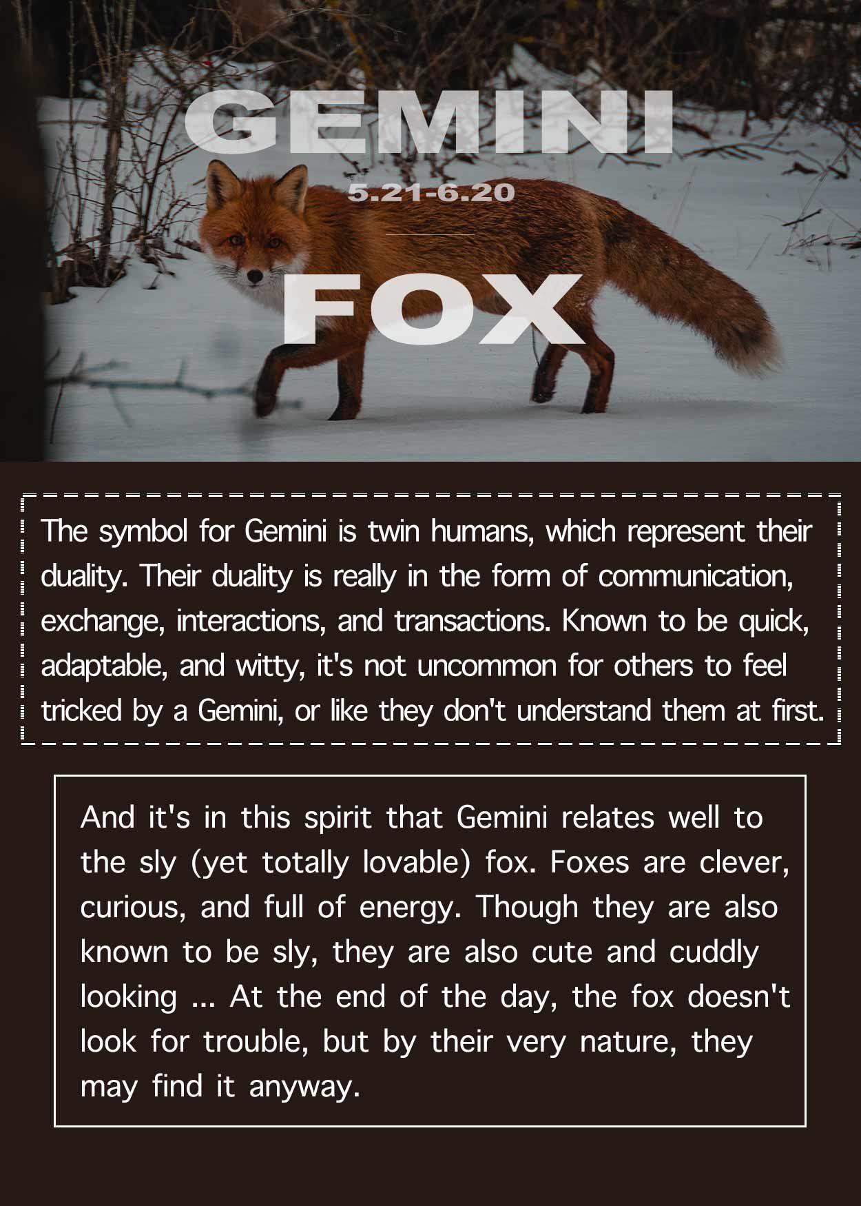 19++ What is gemini spirit animal images