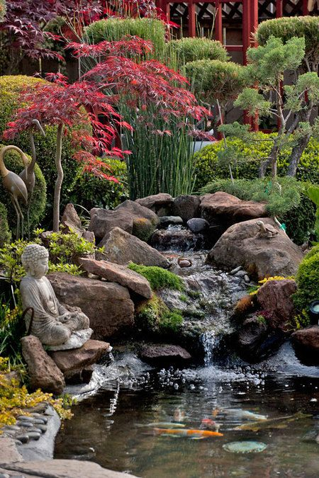 A waterfall trickles down into a koi pond