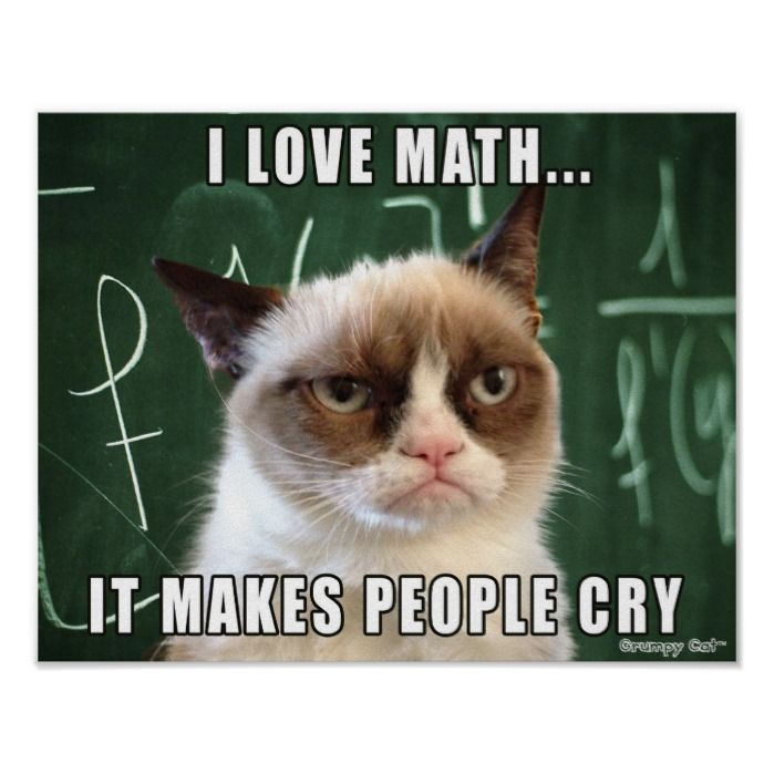 Photo of Grumpy Cat Poster- I love math it makes people cry Poster | Zazzle.com