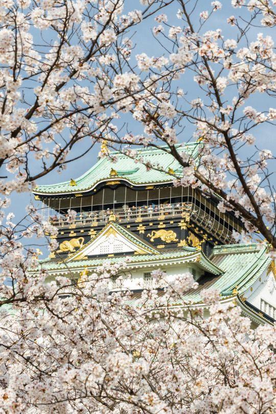 #Osaka Castle