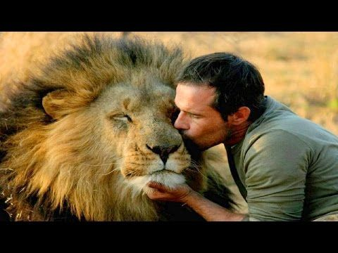 Top 10 Unbelievable Animals That Saved People S Lives Youtube