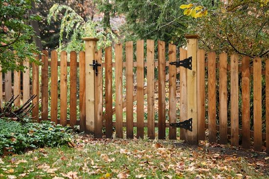 Western Red Cedar Dog Eared Picket Fence Yard for Jun Pinterest