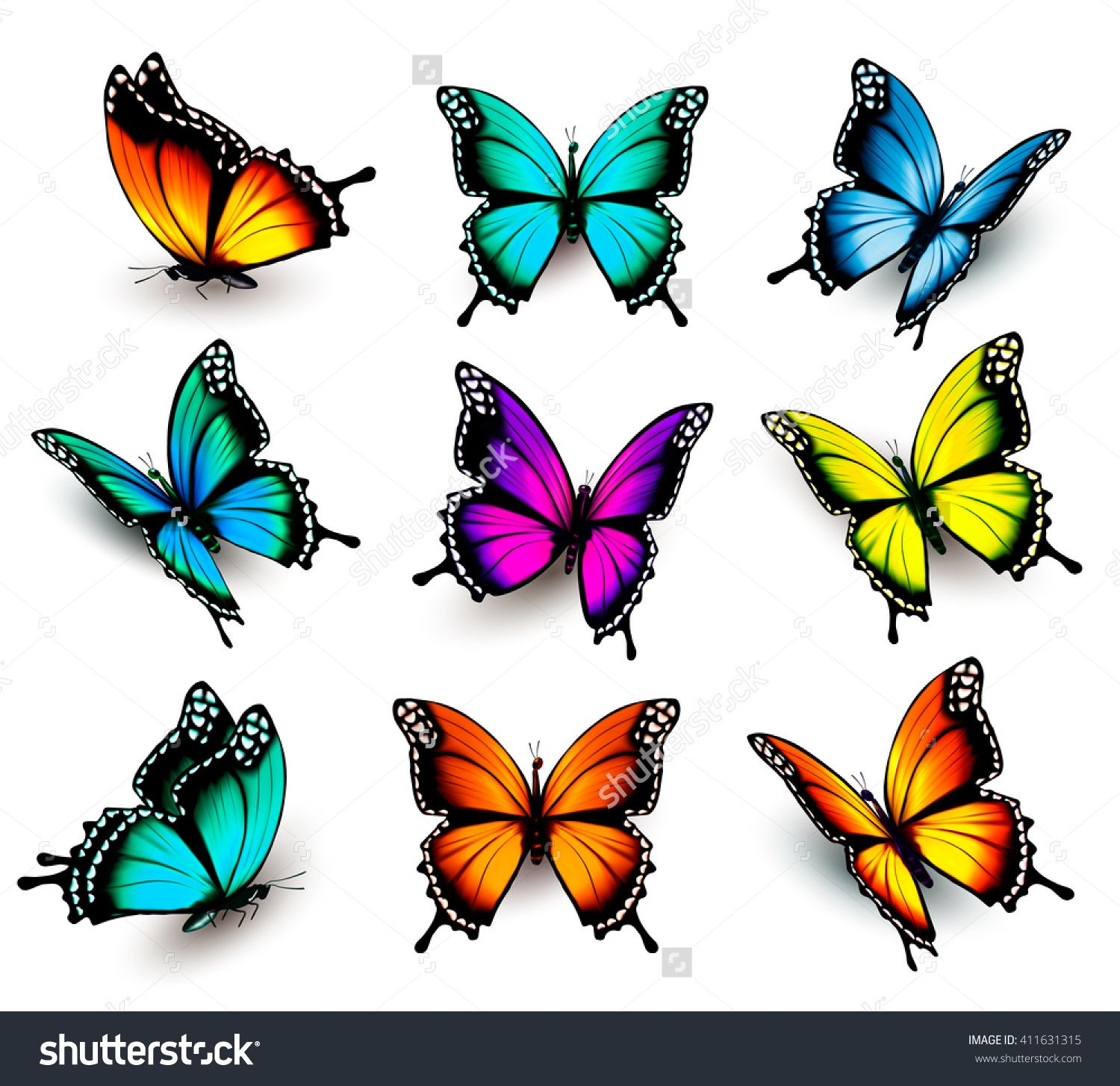 collection of colorful butterflies flying in different