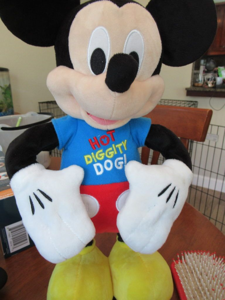Hot Diggity Dog Dance Play Mickey Tabbys Pantry Hot Diggity