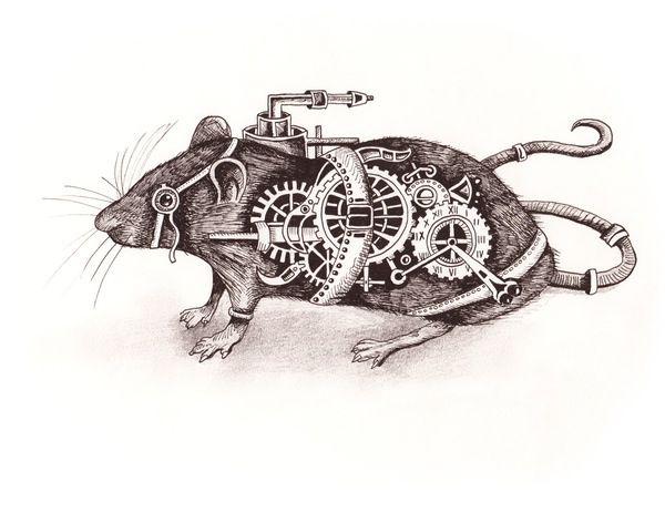 Nathaniel The Steampunk Rat - Steampunk Animal Art Prints