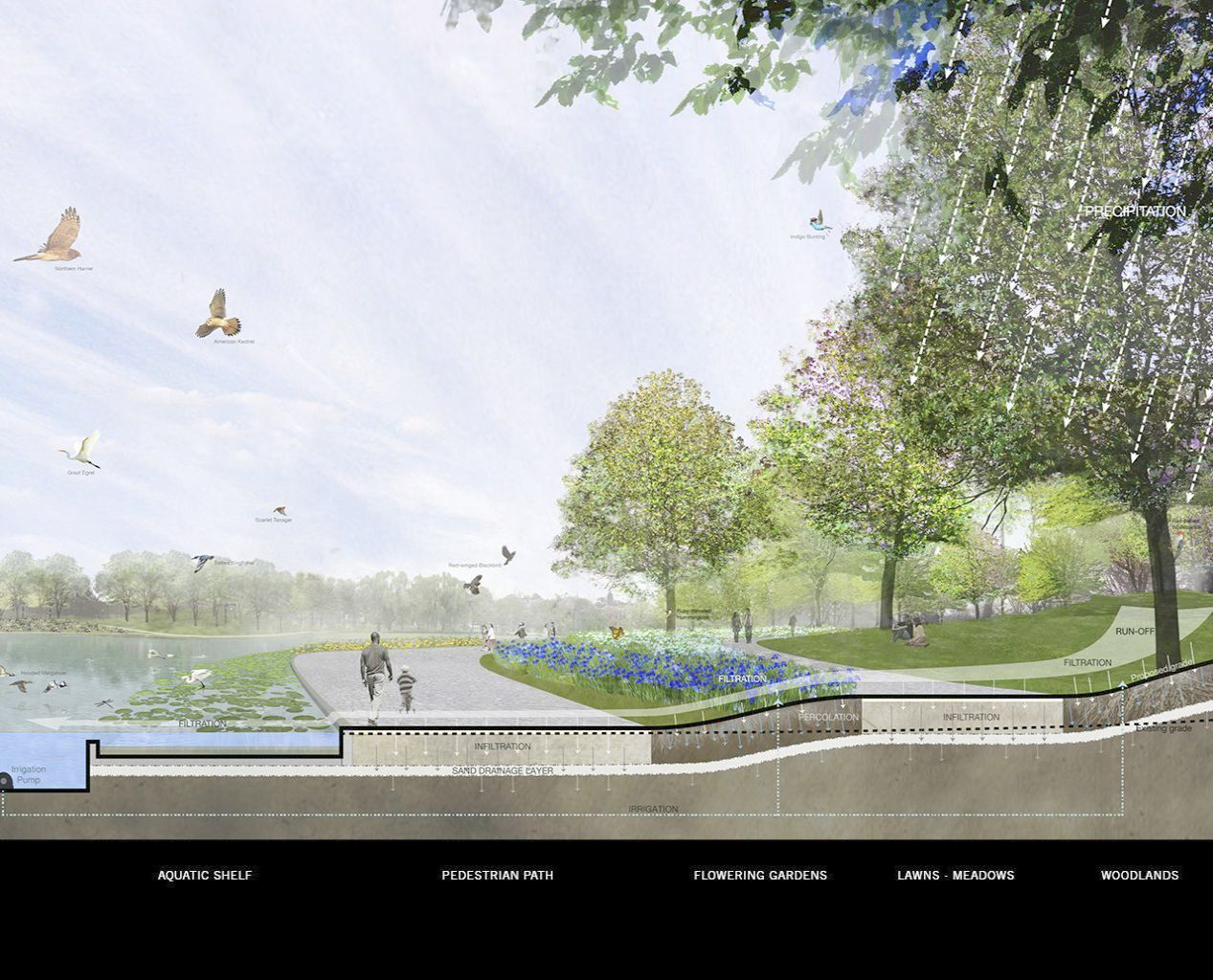 Landscape Architecture Deck Design except Landscape ...