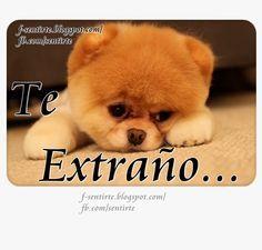 Amor Mio ღ Eyiz Te Extrano Chatis Love Friendship Y Passion
