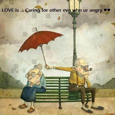 True Love Funny Quotes Words Love Quotes