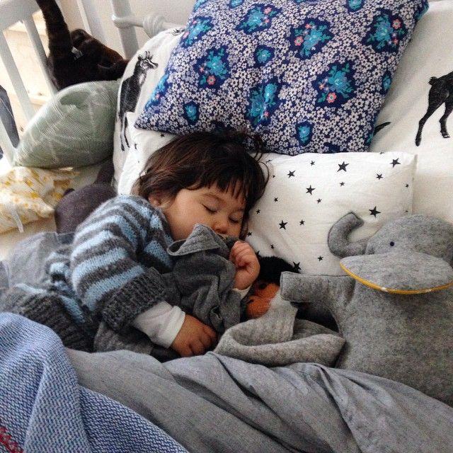 Artemis Russell @junkaholique We both have cold...Instagram photo | Websta (Webstagram)