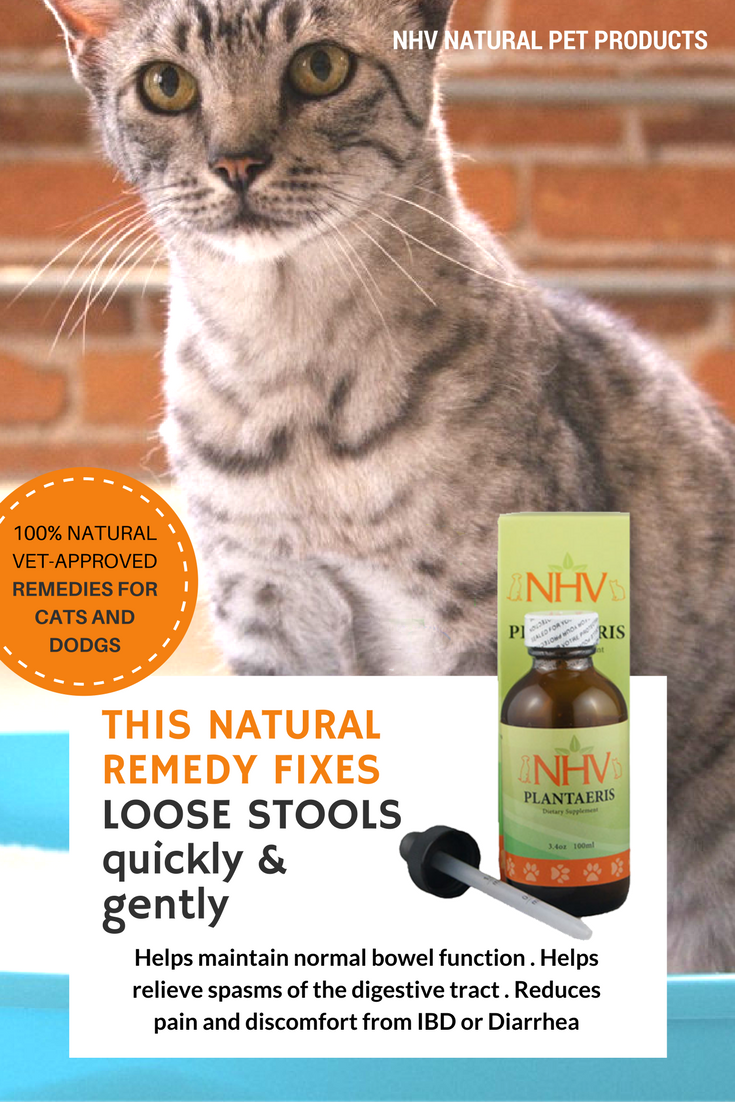 Plantaeris Is Designed To Reduce Symptoms Of Diarrhea And Has A Pleasing Taste Most Pets Enjoy Diarrhea Is A Sy Natural Pet Remedies Cat Diseases Pet Remedies