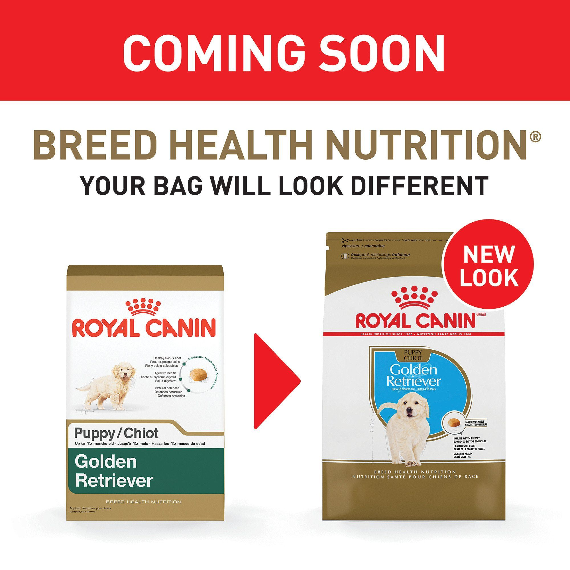 Royal Canin Breed Health Nutrition Golden Retriever Puppy Dry Dog