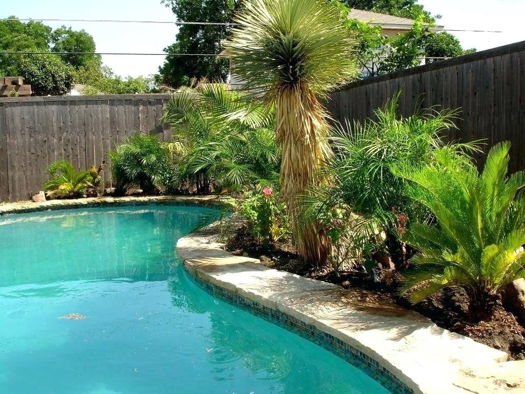 Astounding Backyard Landscaping Ideas Around Pool ... on Tropical Small Backyard Ideas id=30521