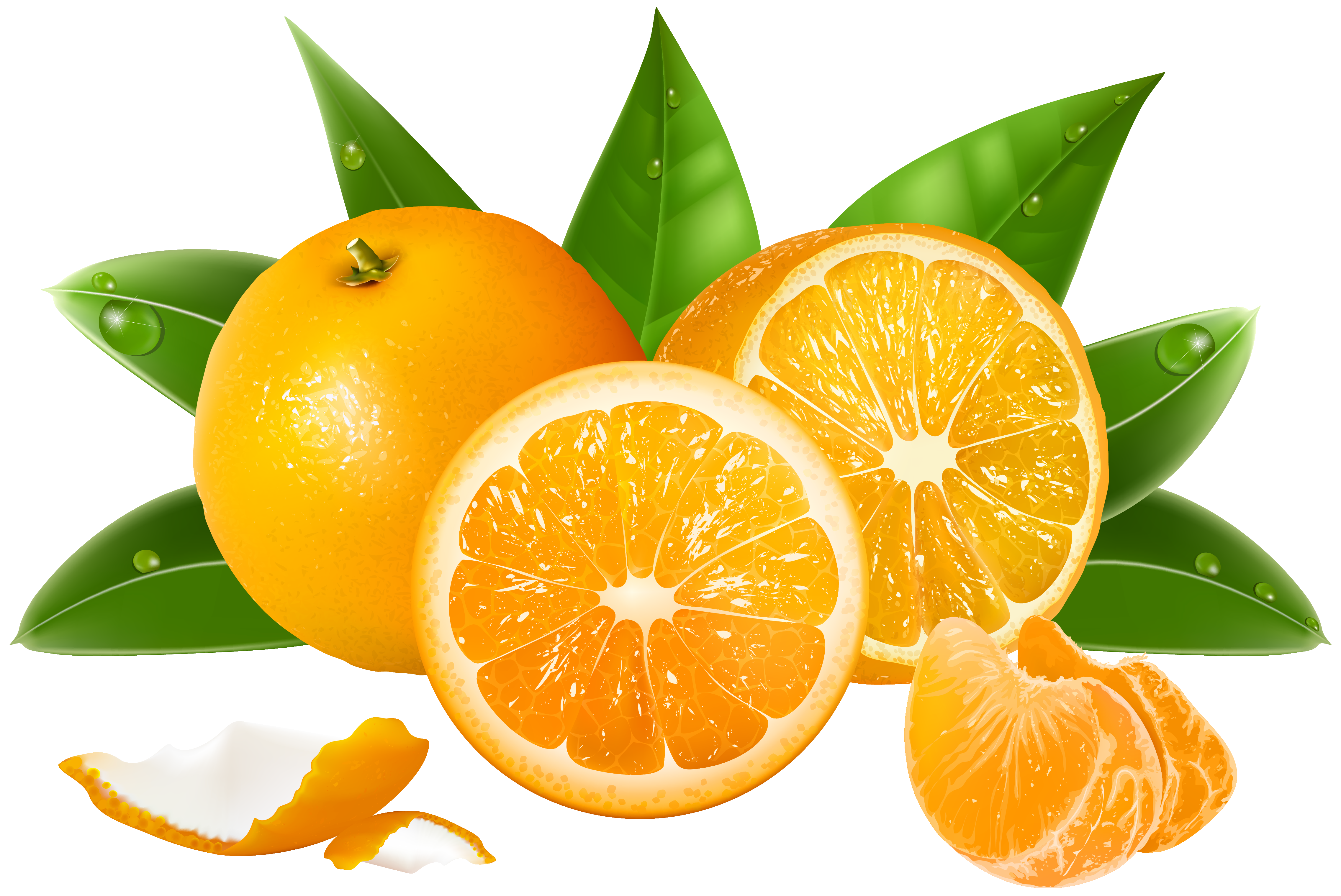 Oranges Png Clipart Image Gallery Yopriceville High Quality Images And Transparent Png Free Clipart Fruit Orange Fruit Clip Art