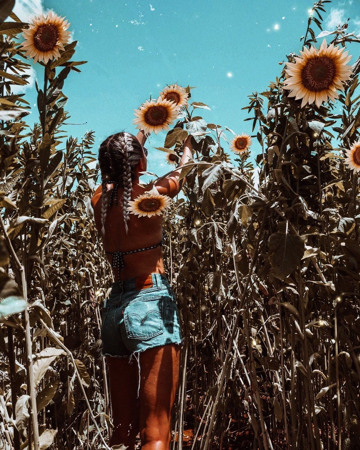 Australia Vibes Summer aesthetic summer inspo swimwear fashion sunflowers sunflower field The Effective Pictures We Offer You About summer outif A quality picture can tel...