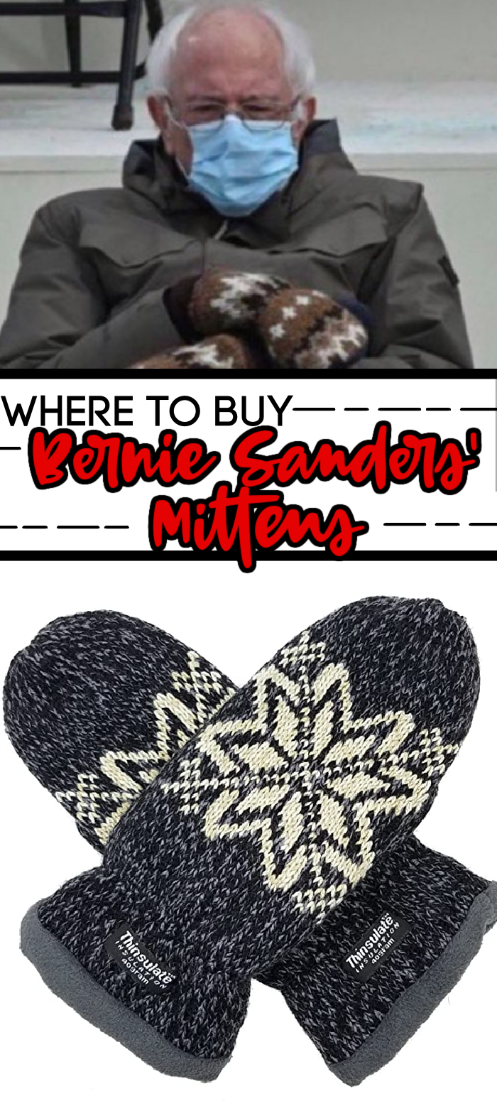 Everyone Wants Bernier Sanders Mittens Here S Where You Can Get Some In 2021 Moms Inspiration Mittens I Can Do It