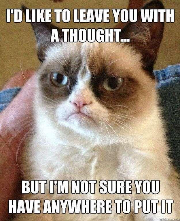 Best of Grumpy Cat