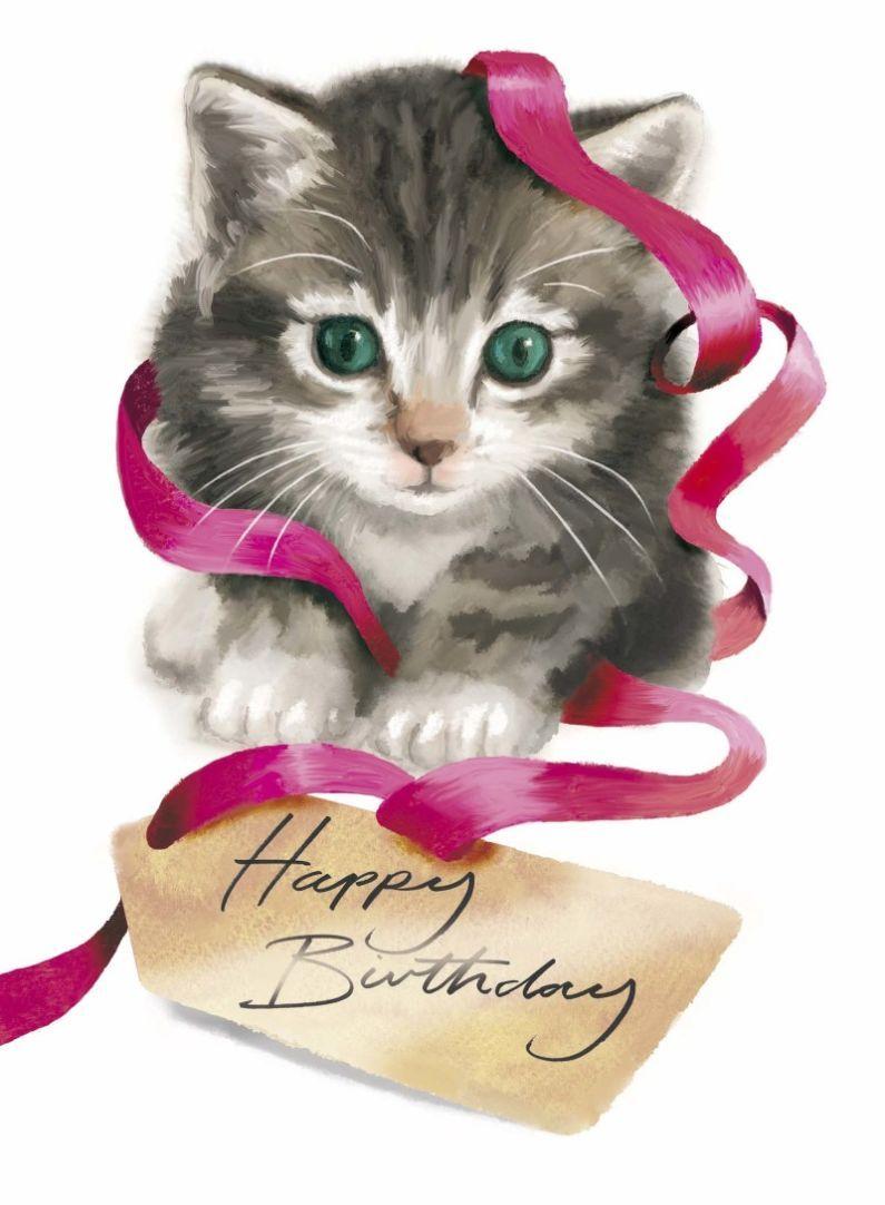 Cute Kitten 2 Drawn To Better Astound Us Kittens Cutest Kitten Birthday Happy Birthday Kitten