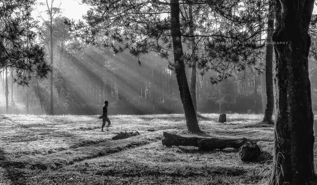 Berjalan dalam hitam putih hidengbodas hitamputih nature
