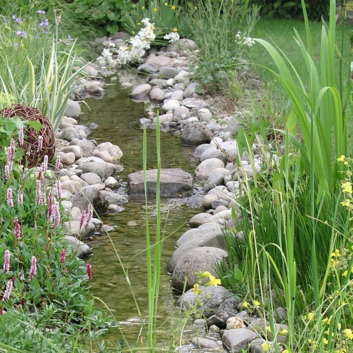 Bachlauf - Pflanzen, Ideen Und Tipps | Garten Teich Im Garten Anlegen Und Pflegen Nutzliche Tipps Fur Hobby Gartner