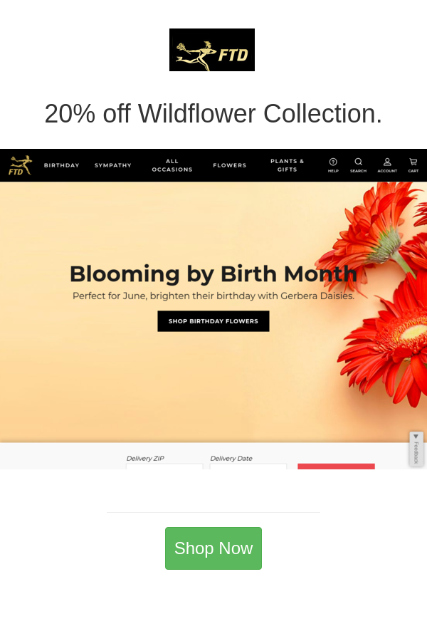 Best Deals And Coupons For Ftd In 2020 Ftd Wild Flowers Planting Flowers
