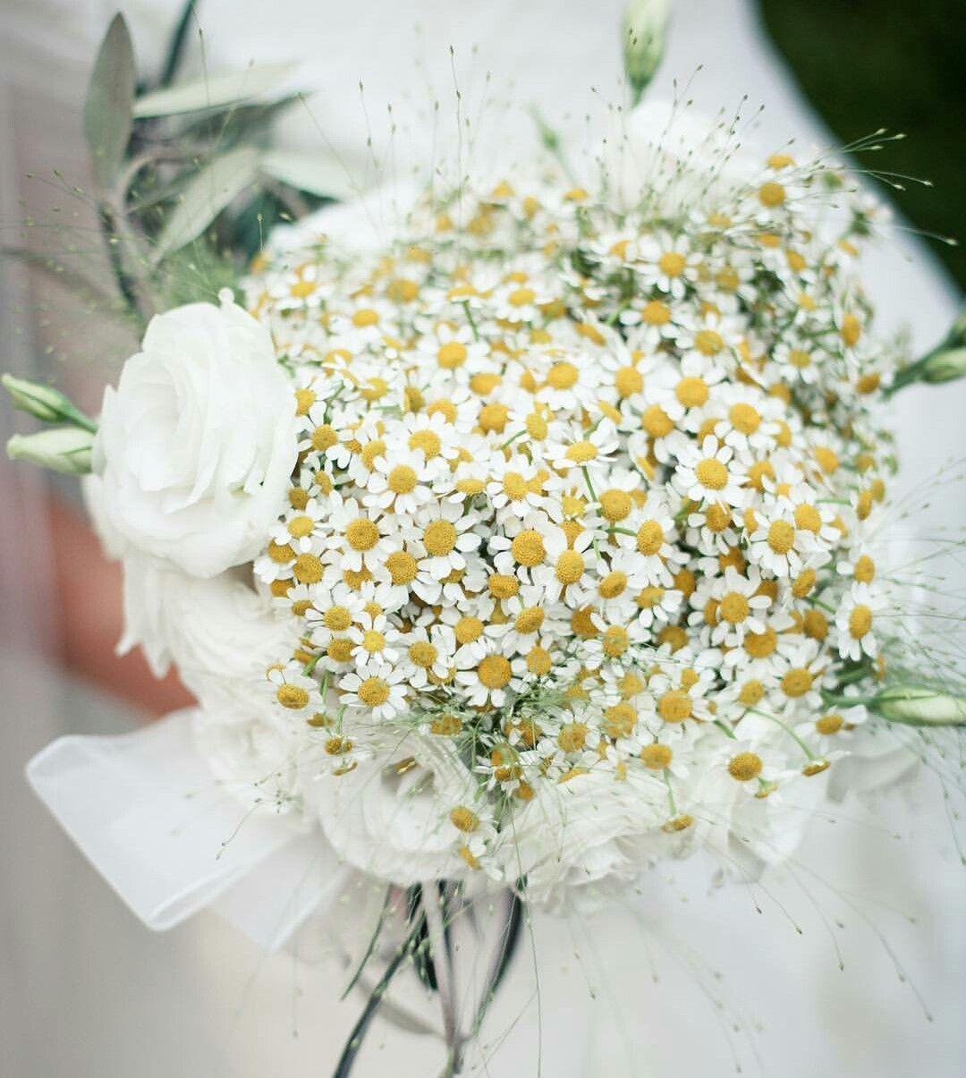 Margherite Per Un Buquet Da Sposa Bouquet Matrimonio Bouquet Da Sposa Bouquet Di Nozze