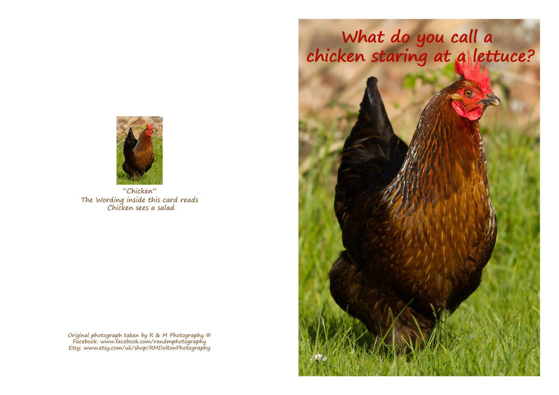 Chicken joke greeting card by rmdoltonphotography on etsy chicken joke greeting card by rmdoltonphotography on etsy kristyandbryce Gallery