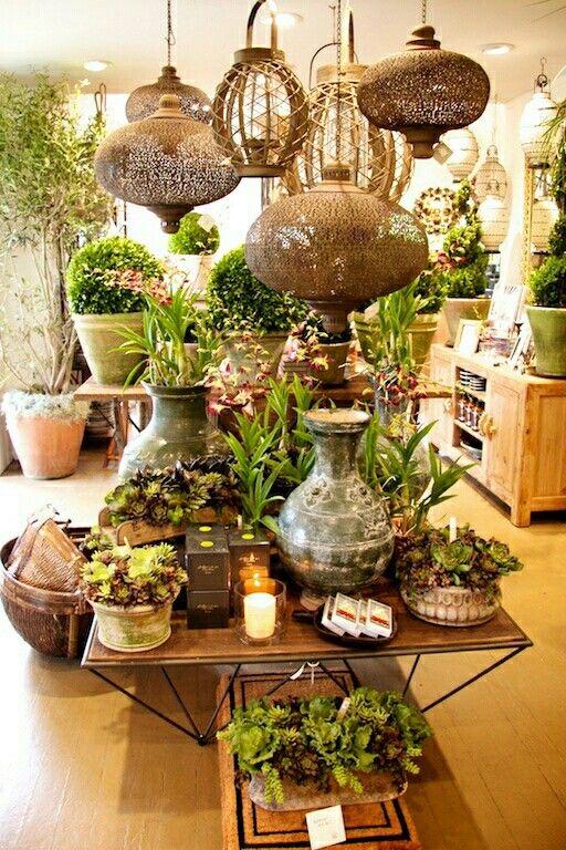 Succulents Flower shop display, Flower shop, Garden