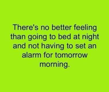 There is no better feeling!' (Funny People Pictures) - #bed #feeling #morning #sleep #tomorrow