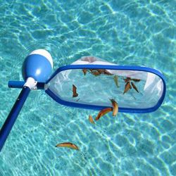 Hand Held Skimmers Trap Leaves With Our Durable Pool Skimmer Nets Floating Pool Skimmer Pool Skimmer Pool