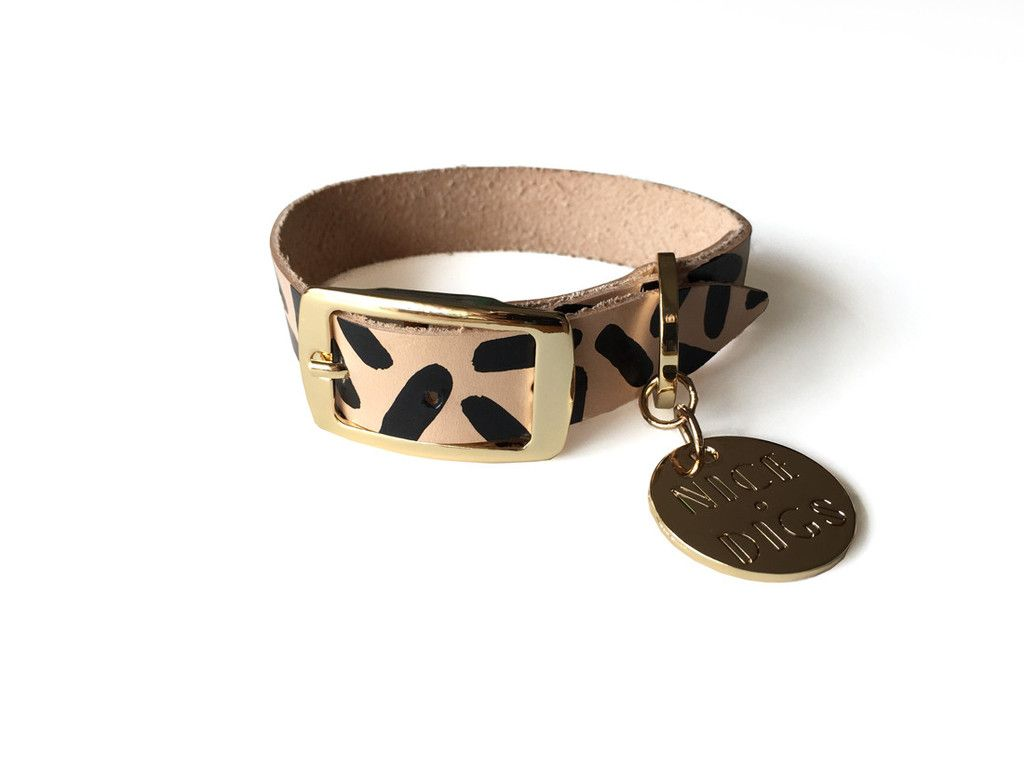 Tiggy leather collar black living with dogs pinterest dog
