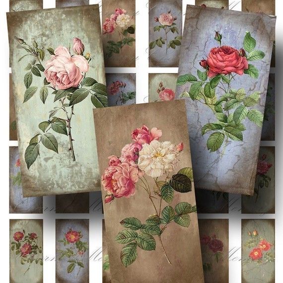 Rose Digital Collage Sheet  Digital by CharmedMemoryCollage #vintage #digitalcollage #etsy